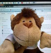 Monkey Facebook