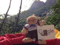 Monkey Rio